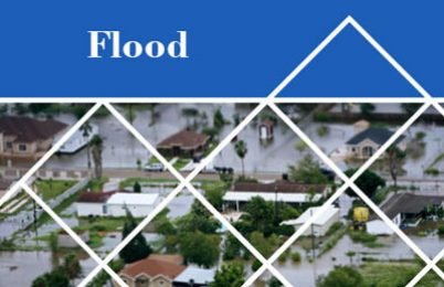 Flood (dbook – series)